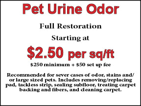 pet-urine-restoration_orig